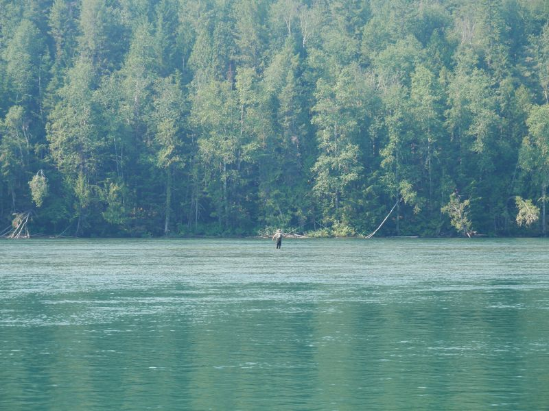 Fly Fishing Clearwater River