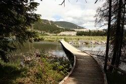Boardwalk Path leading aroound Grotto Pond