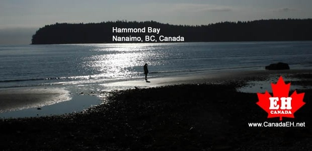 We arrived in Nanaimo, BC on Vancouver Island at 7 AM in the morning. Bags under our eyes we caught the first ferry in the morning after driving from Merritt, […]