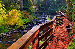 Best Autumn Hiking Trails