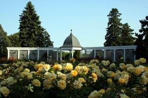 rose-garden0niagara