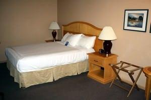 1 Bedroom Accommodation