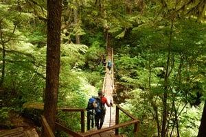 Cape Scott Trail