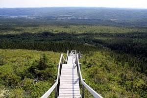 Alex Murray Trail