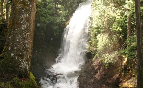 Traveler Choice Awards Fletcher Falls Hiking Trail