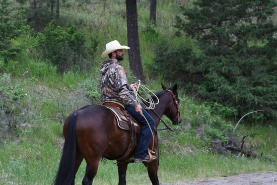 Clinton Cowboy
