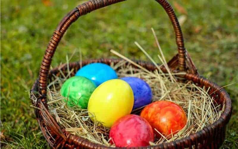 Eggs of tourism