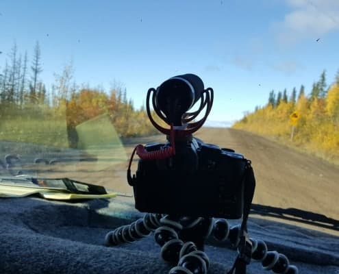 autmn colors on Alaska Highway