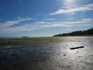 nanoose beach vancouver island