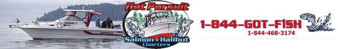 Salmon Fishing Ucluelet - Hot Pursuit Charters