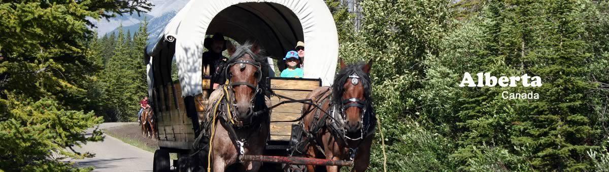 Horse Carriage Rides - Alberta, Canada