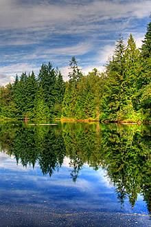 Top Things To Do In Coquitlam Bc Canada Eh Canada Travel