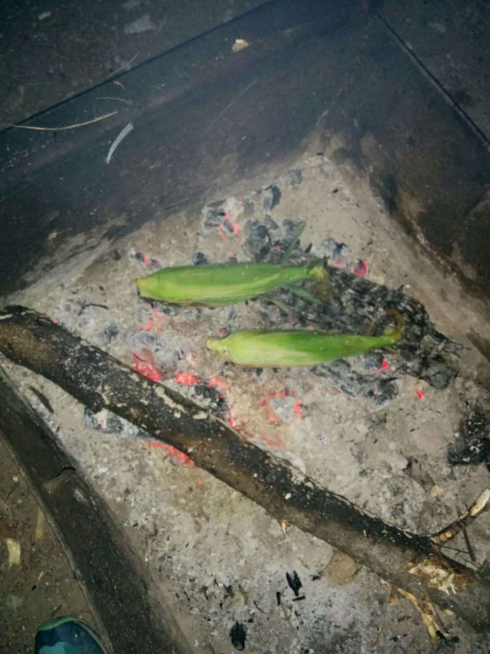 Campfire corn is the best!