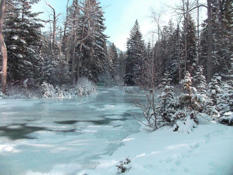 Winter magic along Sinclair Creek