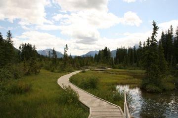 trail20090707_65