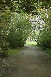 edmonton_forwst_capital_trail_06