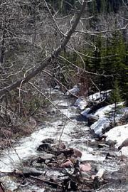 rowe-creek20090520_580001