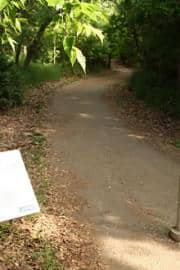 path20090615_450001