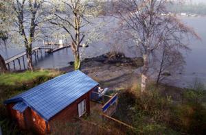 ucluelet-cottage