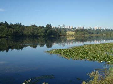 burnaby_lake