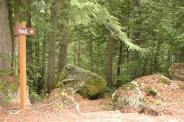 Old Growth Hiking Trail, Nelson