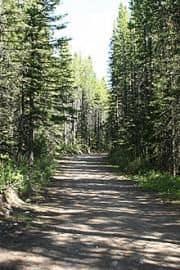 Elk Pass Trail