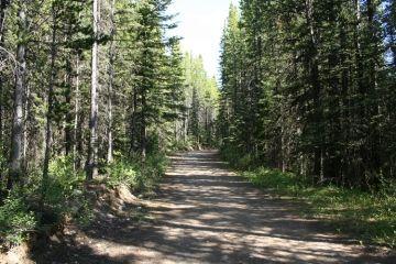 trail20090702_36