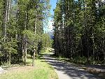 Boulton Creek Trail