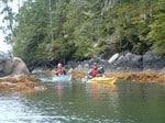 thumb_ocean-kayaking-tours