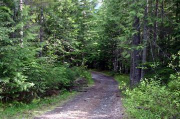 K&S Wagon Hiking Trail, Kaslo