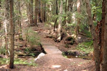 Merry Creek Trails