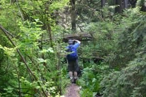 keha_bay_trail_hiker