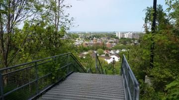 Hamilton Escarpment Stairs
