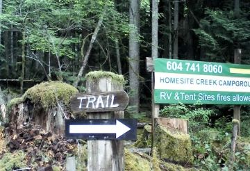 Homesite Creek Trail & Waterfall