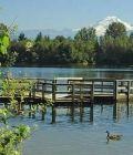 mill-lake-abbotsford