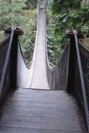pinecone-burke-provincial-park