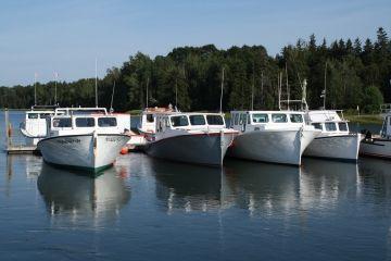 ladner-harbour-park
