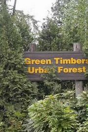 green-timbers-park-220