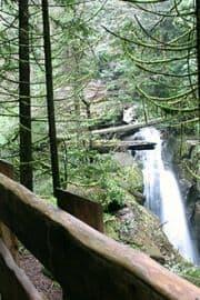 cypress-falls-trail