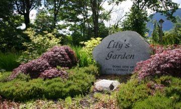Lily's Garden Park