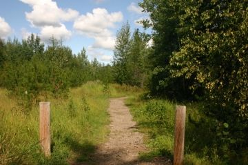 moores-trail01
