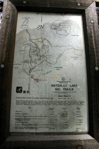 waterlily_trail