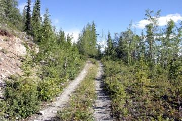 white-mountain-trail_008