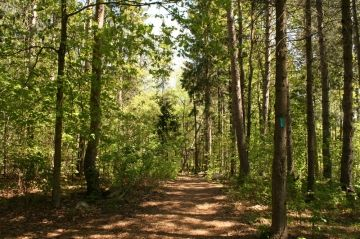 laurentian_escarpment_conservation_05