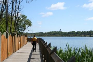 gillies-lake-conservation-area-timmins-ontario-_91
