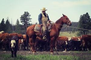 1-cowboy-on-horse