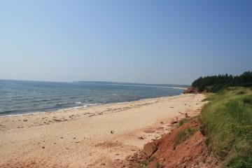 beach20100903_00