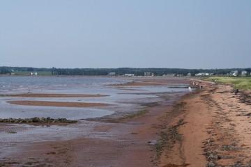 beach20100903_66