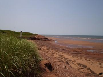 belmont-beach