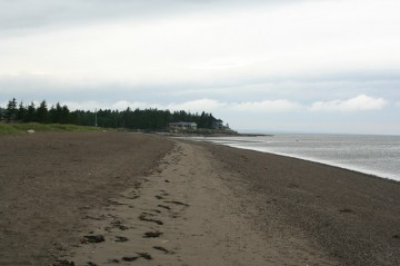 beach-main20100809_75